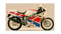 SPECCHIO SX.BIANCO   FZR600